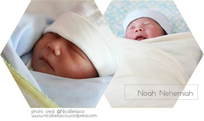 noahpic